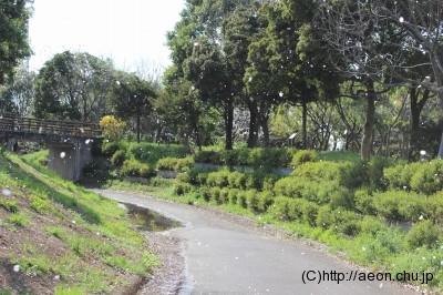 県民健康福祉村_貸し自転車サイクリングコース