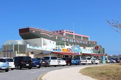 沖縄ドライブおすすめスポット報告~車で行ける離島編~
