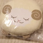 たまひよ全員プレゼント「コットン素材の授乳まくら」が到着!!