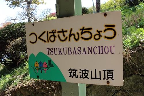 tsukubasan_001