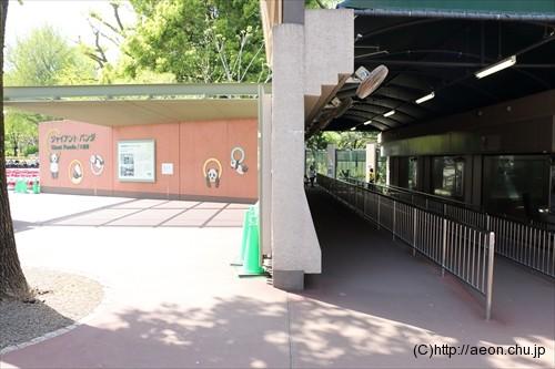 上野動物園パンダ舎の混雑状況