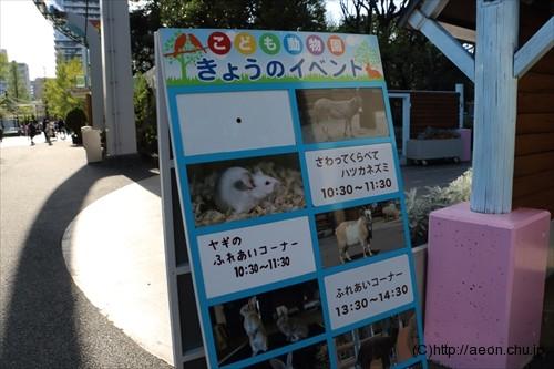 上野動物園 こども動物園スケジュール